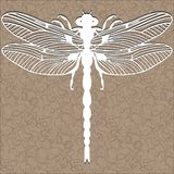 Dragonfly Vector Illustration Eps10 Royalty Free Stock Photography