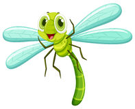 Free Dragonfly With Happy Face Royalty Free Stock Photos - 70820908