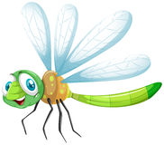 Free Dragonfly With Happy Face Stock Images - 72047544