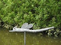 Dragonfly, woda, strumień, zieleń, las Obraz Stock