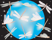 Dragonfly world. Dragonflies flying around the globe with night scene in background Royalty Free Stock Image