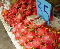 Dragonfruit Royalty Free Stock Images