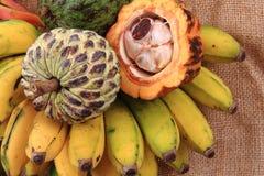 dragonfruit bannana annona папапайи Стоковые Фотографии RF