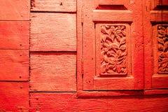 Dragonfry Fotografie Stock