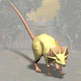 Dragonrat #01. Fantasy Series - Image contains a Clipping Path / Cutting Path for the main object Royalty Free Stock Image