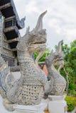 dragons Fotos de Stock