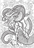 dragons Photo stock