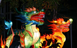 dragons Photographie stock libre de droits