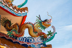 Dragons in chinese temple Stock Images