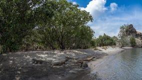 Dragons de Komodo sur une plage Photographie stock libre de droits