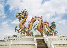 Dragons. In Thailand national park Royalty Free Stock Photography