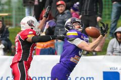 dragons Vikings contre lions images stock