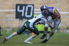 dragons Vikings contre unicorns Photo libre de droits