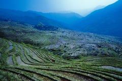 Dragonss drar tillbaka Guili fotografering för bildbyråer