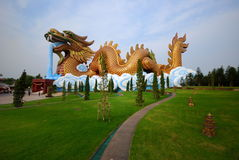 Dragonthai Royalty Free Stock Photos