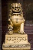 Dragoon del chino fotos de archivo