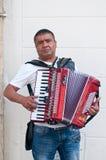 Dragspels musiker i gatan arkivbild
