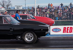 Dragsters Face Off Royalty Free Stock Images