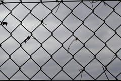 Draht mesi Rückseitenwolken lizenzfreie stockbilder