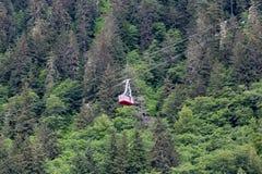Drahtseilbahn über Evergreens Stockfotos