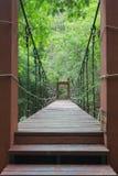 Drahtseilbrücke Stockfotografie