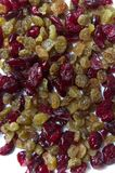 Dried Raisins And Cranberries Royalty Free Stock Photos