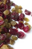 Dried Raisins And Cranberries Stock Image