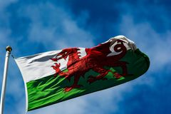 Draig goch. Yr Draig goch ( Red Dragon) flag of Wales flying on a blue sky wipsy clouds background stock image