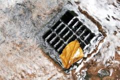 Drain de l'eau Images libres de droits