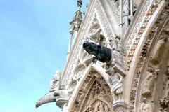 Drain the gargoyle. The gargoyle on the facade of the medieval Church in Reims, France royalty free stock photos