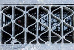 Drain grate Stock Images
