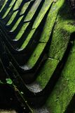 Drain with green moss Royalty Free Stock Images