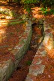 Drain in ground in Arboretum, Sochi, Russia. The drain in the ground with many dry leaves in Arboretum in sunny autumn day, Sochi, Russia Stock Photos