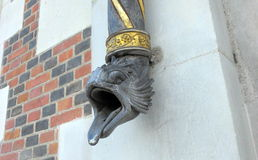 Drain pipe with serpent mouth at Blois, France Stock Images