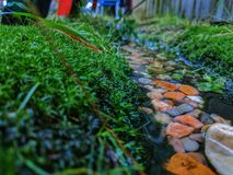 A drain after a rain. Moss next to some vibrant and colorful rocks, contrasting next to the vibrant moss Royalty Free Stock Images