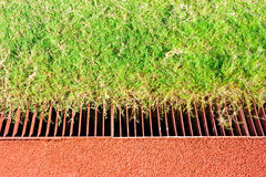 Drain in the stadium. The field stock image