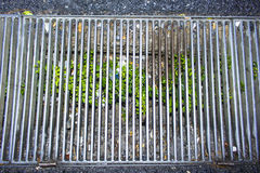 Drain street Royalty Free Stock Photography
