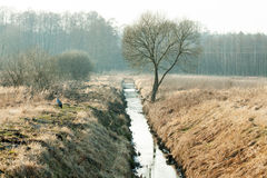 Drainage channel running through Royalty Free Stock Image