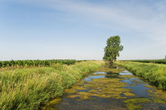Drainage ditch Stock Photography