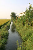 Drainage ditch in the countryside Stock Images