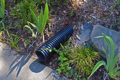 Drainage pipe in lawn. Close up of water drainage pipe next to sidewalk in historic neighborhood royalty free stock image