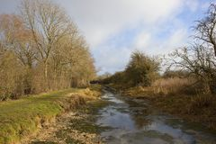 Winter landscape with drained canal. A drained canal in winter with towpath walkway and leafless trees under a blue cloudy sky Royalty Free Stock Photography