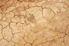 Drained ground, Mongolia Royalty Free Stock Image