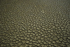 Drained soil. Cracked and dried mud texture Royalty Free Stock Images