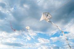 Drakar i rad som flyger Royaltyfri Foto