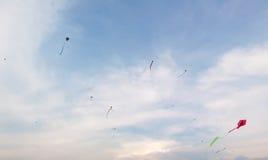 Drakar på himlen i sommar Royaltyfri Fotografi