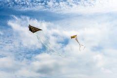 Drakar som flyger i himlen bland molnen Drakefestival royaltyfri foto