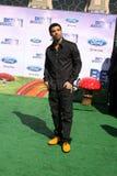 Drake lizenzfreies stockfoto