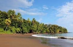 Drake Bay, royaltyfri bild