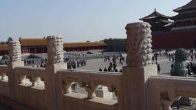Drake & moln som snider totemet i Forbidden City, Kina kungliga arkitektur stock video